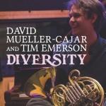 Diversity - David Mueller